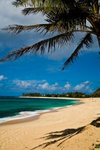 Credit - Hawaii Tourism Authority, Photographer: Tor Johnson